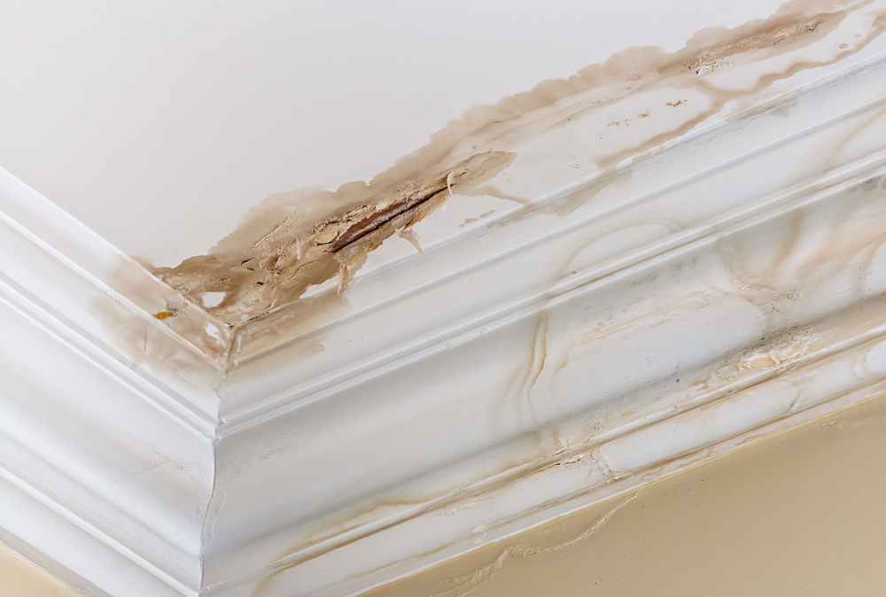 waterproofing for roof